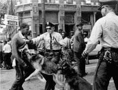 demonstrator-rights-police-dog-reaction-Alabama-Birmingham-May-3-1963
